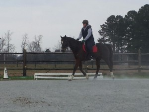 A nice trot with Verne